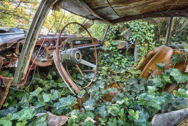 Lost Places – Fahrt ins Grüne